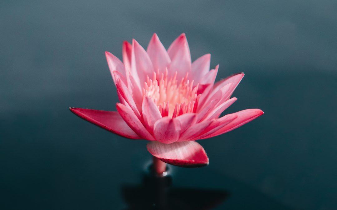 Spiritualität. Die Sehnsucht nach dem Geistigen